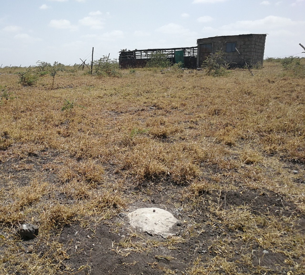 Plots for sale located in Malaa